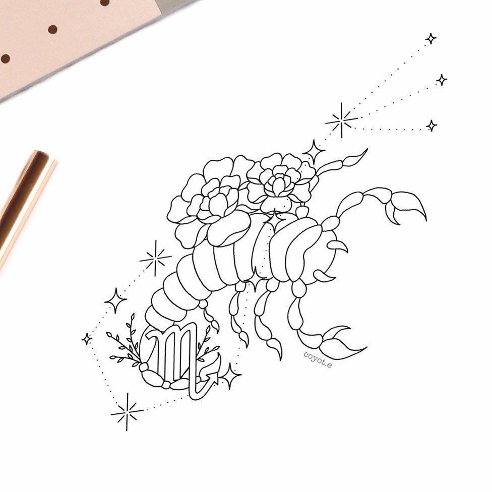 Scorpio Zodiac Horoscope Constellation Sign Symbol Tattoo (52)
