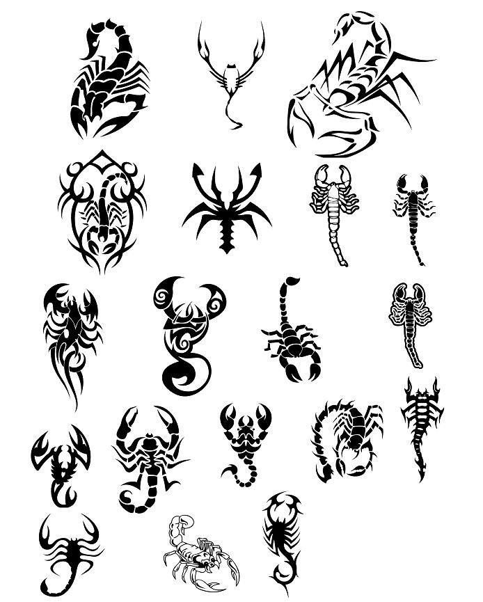 Scorpio Zodiac Horoscope Constellation Sign Symbol Tattoo (62)