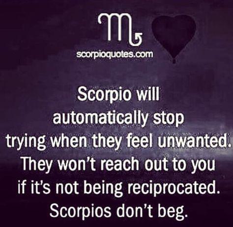 Scorpio Zodiac Horoscope Constellation Sign Symbol Tattoo (71)