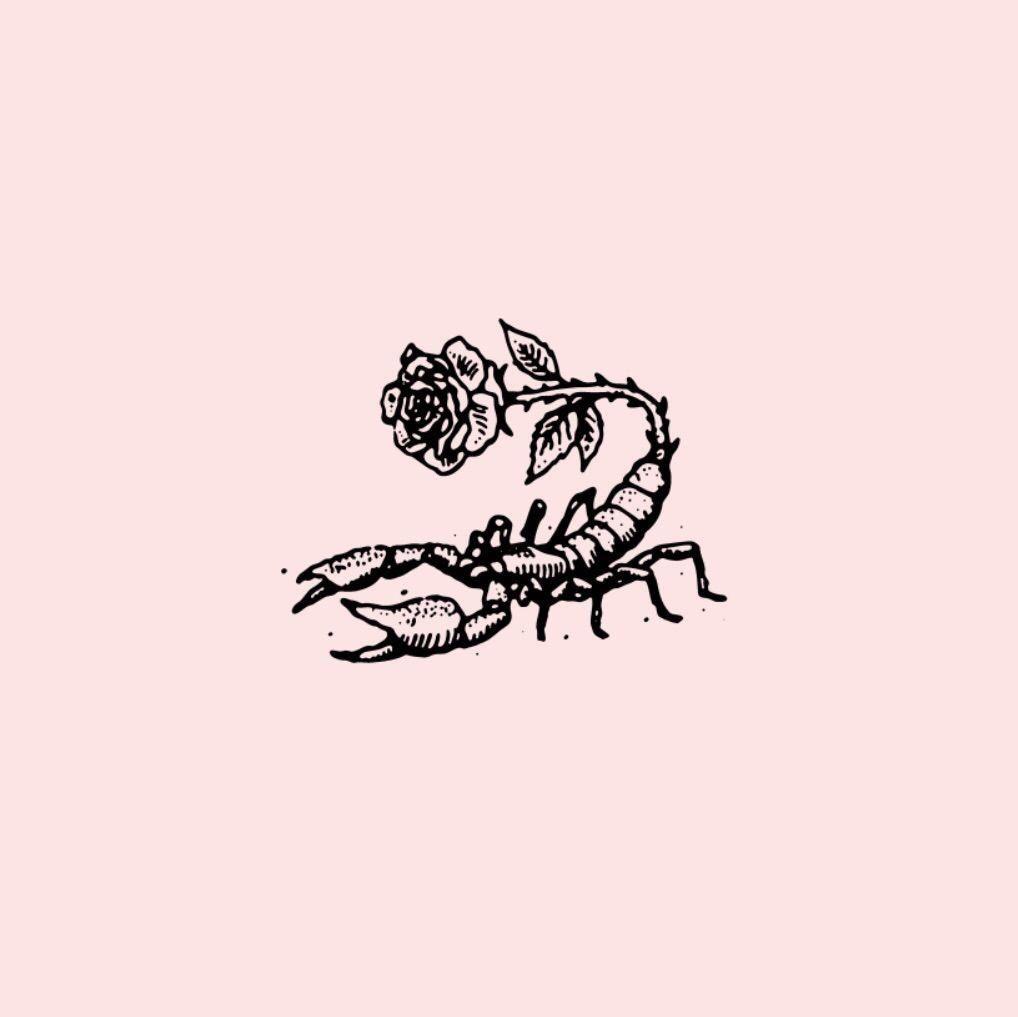 Scorpio Zodiac Horoscope Constellation Sign Symbol Tattoo (8)