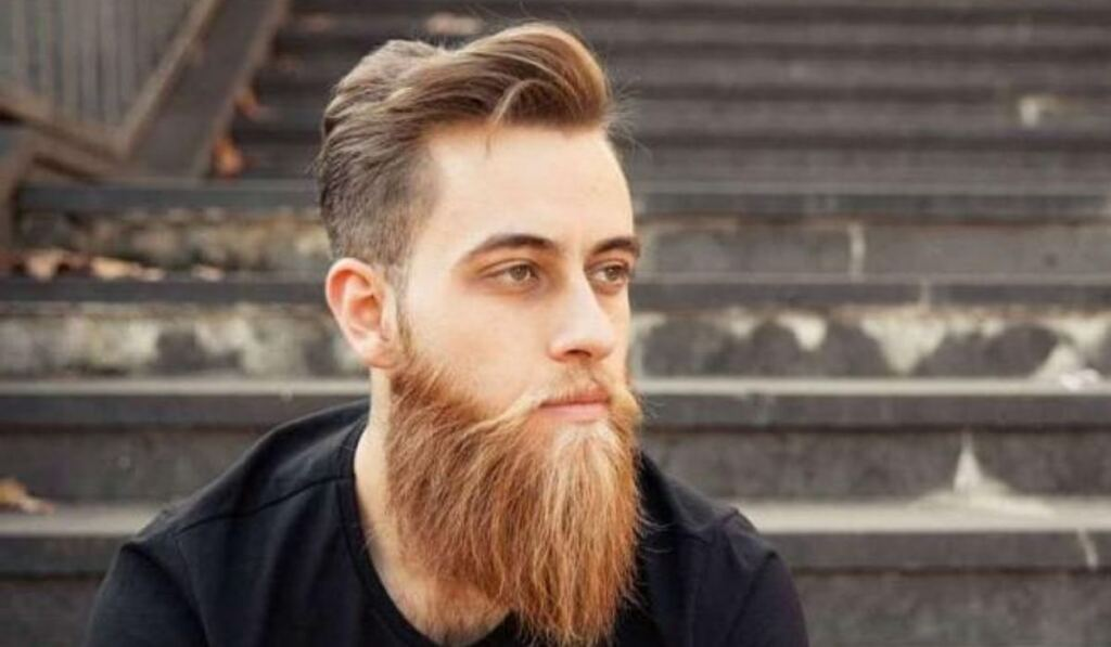 Best Beard Colors